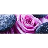 Vliesové fototapety růže a lava kameny rozměr 250 cm x 104 cm