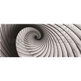 Vliesové fototapety lastura šedá