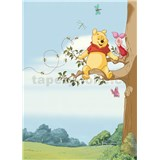 Fototapety Disney Medvídek Pú na stromě rozměr 184 cm x 254 cm