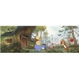 Fototapety Disney Medvídek Pú dům Medvídka Pú rozměr 368 cm x 127 cm