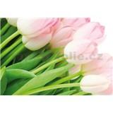 Vliesové fototapety růžové tulipány rozměr 312 cm x 219 cm