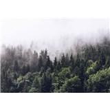 Fototapety opar nad lesem rozměr 366 cm x 254 cm - POSLEDNÍ KUSY