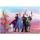 Fototapety Disney Frozen II přátelé rozměr 368 cm x 254 cm