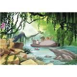 Fototapety Disney Jungle Book plavání s Balúem rozměr 368 cm x 254 cm