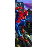 /fotocache/small/fototapety/spiderman_391437.jpg