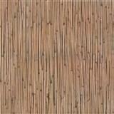 Samolepící tapety bambus 45 cm x 15 m