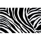 Samolepící tapety - zebra 90 cm x 15 m