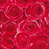Samolepící tapety růže červená 45 cm x 15 m