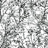 Vliesové tapety na zeď Graphics Alive - větve stromů černé - SLEVA