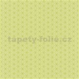 Papírové tapety na zeď Happy Kids 2 - geometrické kytičky zelené