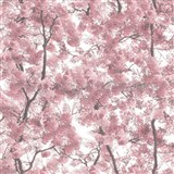 Vliesové tapety na zeď Home rozkvetlé stromy růžové
