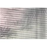 Vliesové fototapety stíny rozměr 368 cm x 248 cm