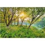 Fototapety Spring Lake rozměr 368 cm x 254 cm
