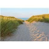Fototapety Sandy Path 368 cm x 254 cm
