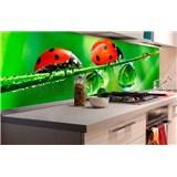 Samolepící tapety za kuchyňskou linku slunéčko sedmitečné rozměr 180 cm x 60 cm