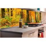 Samolepící tapety za kuchyňskou linku les na podzim rozměr 180 cm x 60 cm