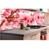 Samolepící tapety za kuchyňskou linku jabloňově květy rozměr 180 cm x 60 cm