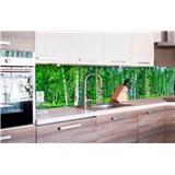 Samolepící tapety za kuchyňskou linku březový les rozměr 260 cm x 60 cm