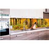 Samolepící tapety za kuchyňskou linku les na podzim rozměr 260 cm x 60 cm