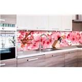 Samolepící tapety za kuchyňskou linku jabloňově květy rozměr 260 cm x 60 cm