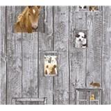 Dětské vliesové tapety na zeď Little Stars zvířata na šedém dřevěném podkladu