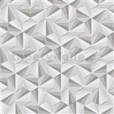 Vliesové tapety na zeď LIVIO jehlany šedo-stříbrné