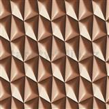 Vliesové tapety na zeď Harmony Mac Stopa 3D vzor hnědý