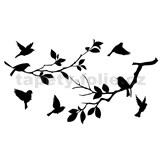 Samolepky na zeď ptáci