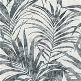 Vliesové tapety na zeď IMPOL NEU listy palmy černé na bílém podkladu