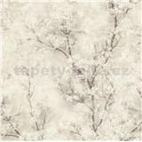 Vliesové tapety na zeď IMPOL New Wall florální vzor krémový