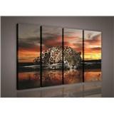 Obraz na plátně Jaguár barevný 120 x 80 cm