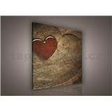 Obraz na plátně srdce 80 x 80 cm