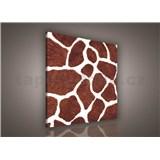 Obraz na plátně žirafí kůže 80 x 80cm