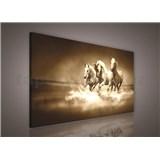 Obraz na plátně stádo koní 75 x 100 cm