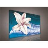 Obraz na plátně lilie na modrém podkladu 75 x 100 cm