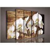 Obraz na plátně orchidej na dřevě 150 x 100 cm