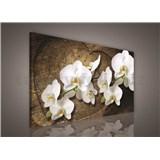 Obraz na plátně bílá orchidej na dřevěném srdci 75 x 100 cm
