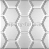3D panel XPS HEXAGON rozměr 50 x 50 cm