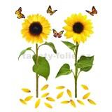 Samolepky na zeď slunečnice s motýly 82 cm x 105 cm