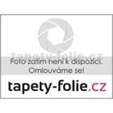 Vliesov� tapety na ze� Ouverture - stonky s listy st��brno-�ern� - SLEVA
