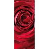 Vliesové fototapety růže rozměr 92 cm x 220 cm