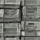 Vliesové tapety na zeď Times bedny světle šedé