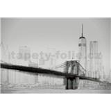 Vliesové fototapety umělecká ilustrace - New York rozměr 368 x 254 cm