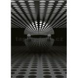Vliesové fototapety 3D koule stříbrná rozměr 184 x 254 cm