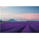 Fototapety Provence Francie rozměr 368 cm x 254 cm