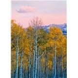Vliesové fototapety břízy a hory rozměr 184 cm x 254 cm