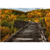 Vliesové fototapety most v lese rozměr 368 cm x 254 cm
