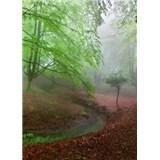 Vliesové fototapety les v mlze rozměr 184 x 254 cm