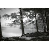 Fototapety lesní jezero rozměr 368 x 254 cm