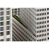 Vliesové fototapety architektura bílé výškové budovy rozměr 368 cm x 254 cm
